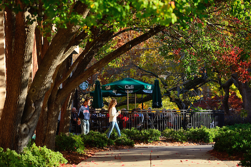 Fall tailgating in the Grove. Photo by UM Photographer Kevin Bain